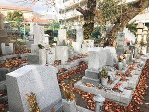 神戸市東灘区にあるお墓、郡家東墓地